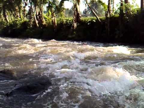 sungai sumberdandang,www.raftingkasembonmalang.com,081334664876